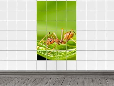 Piastrelle adesivo piastrelle immagine animali formica foglia