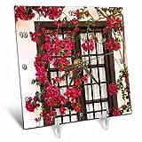 3dRose Danita Delimont - Flowers - Spain, Andalusia. Cordoba. Red bougainvillea and house window. - 6x6 Desk Clock (dc_277893_1)