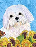 Caroline's Treasures SS4115CHF Maltese Flag Canvas, Large, Multicolor Review