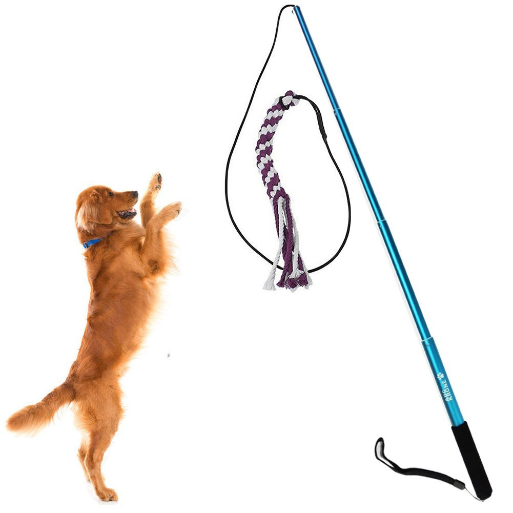 Sanzang Dog toy dog outdoor Play fun Interactive Chasing, Teaser and Exerciser, Extendable Length Interactive Wand, Large, Blue