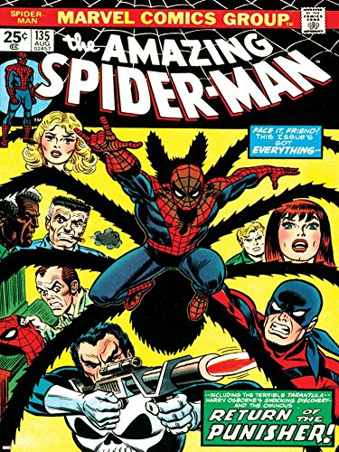 Marvel Comics Retro: The Amazing Spider-Man Comic Book Cover No.135, Return of the Punisher! Poster 24 x 32in