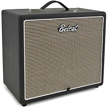 belcat g110 cabinet guitar speaker cabinet pairs with belcat tube h5 head with 10. Black Bedroom Furniture Sets. Home Design Ideas