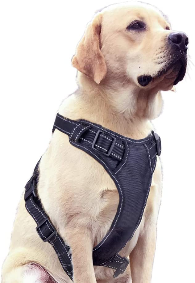 Ditto No-Pull Dog Harness, Adjustable Pet Harness Reflective Oxford Soft Vest with Metal Ring and Comfortable Handle for Small Medium Large Dogs Easy Control