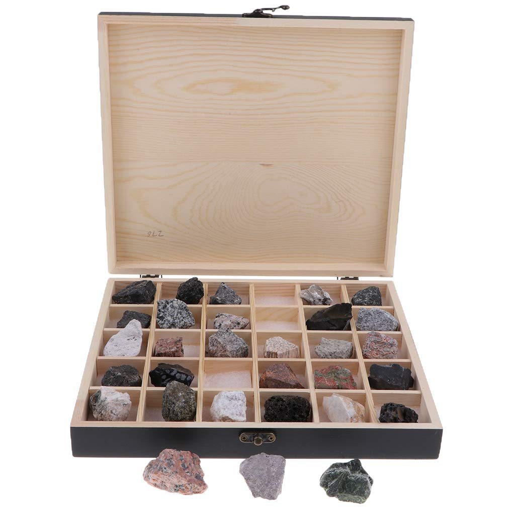 B Blesiya 30pcs/ Box Educational Geology Science Kit - Rock and Mineral Collection Assorted Igneous Rock Specimens in a Display Case School Supplies