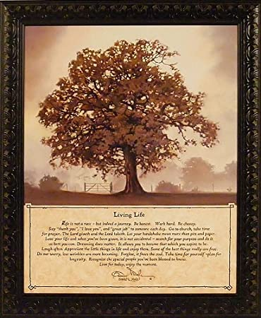 Great Living Life By Bonnie Mohr 20x24 Life Is A Journey Inspirational Quote Tree  Framed Art Print