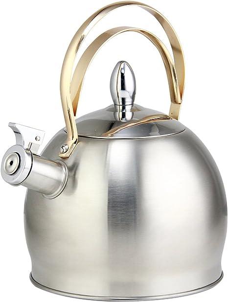 Th/éi/ère sifflante en Acier Inoxydable Argent Bouilloire sifflante /à Induction avec poign/ée Ergonomique pour cuisini/ères /à Induction cuisini/ères /à gaz