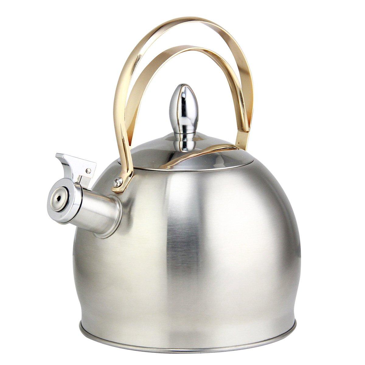 Bollitore a fischio in acciaio INOX Riwendell 3.2-quart, bollitore teiera con manico in rame GS-04043G-3.0L Silver SYNCHKG110150