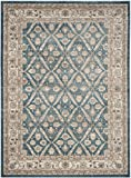 Safavieh Sofia Collection SOF378C Vintage Blue and Beige Distressed Area Rug (8' x 11')