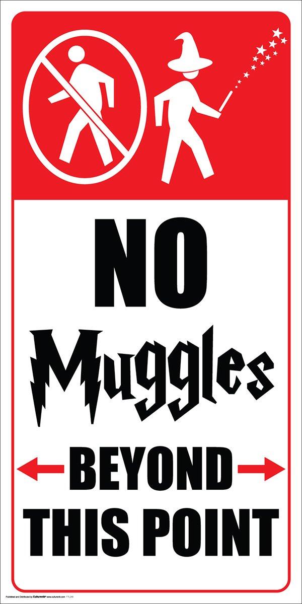 e No Muggles Wizard Humor Poster Print UNFRAMED 12 X 24 Print