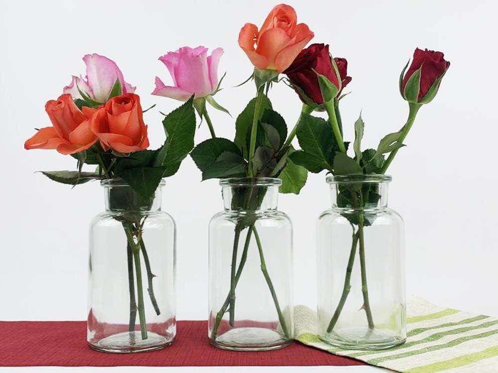 10//12 mini vases ronds de type 300 en verre Lot de 6 Lot de 6