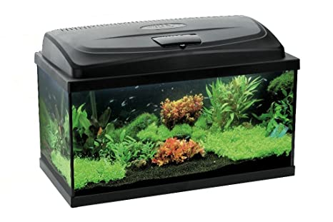 Aquael leddy led set acquario da litri con tecnologia