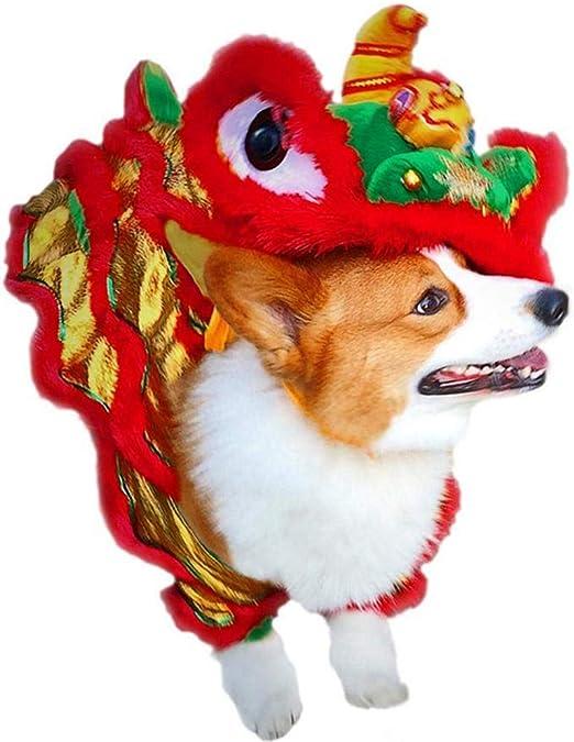 PanDaDa Disfraz de dragón de Baile de león Perro, Disfraz Festivo ...