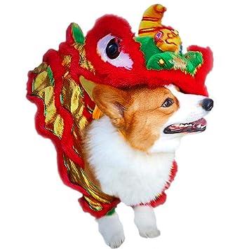 Amazon.com: PanDaDa Disfraz de perro de danza de león ...