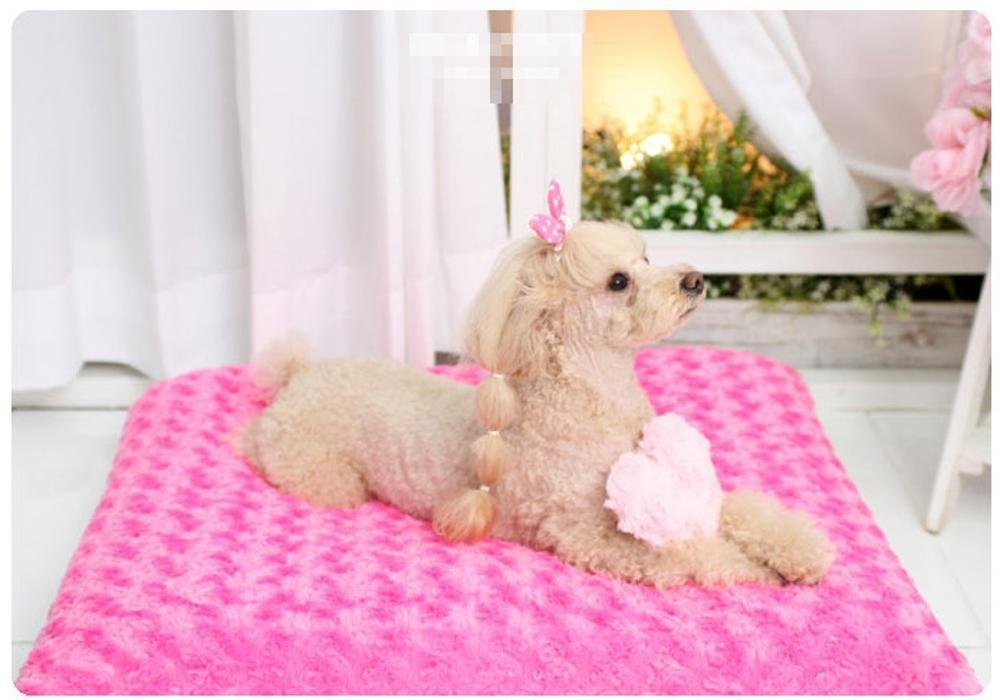 5547 Lozse Pet Beds Cute cat dog thick padded cushion pet dog Warm plush mat for Dogs and Cats Sleeping Cushion