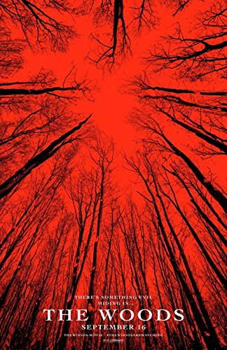 BLAIR WITCH 2016 - WOODS Original Movie Poster 27x40 - Dbl-Sided - VALORIE CURRY
