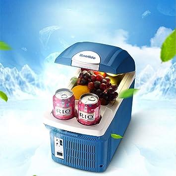 WJSW Mini refrigerador del Coche Caja fría Fresca y cálida Uso ...