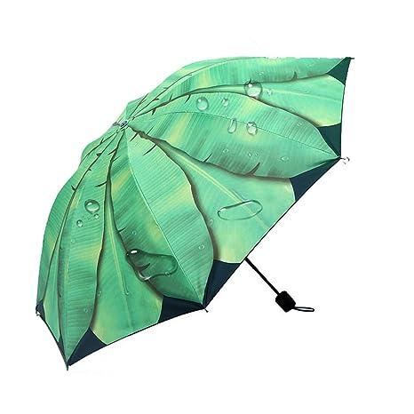 RFVBNM Paraguas/Paraguas Creativo del Sol de la Hoja del ...