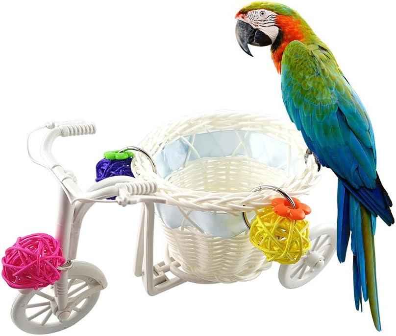 Yeshi Mini carrito de la compra para bicicleta, juguete para loro, juguete para mascotas con movimiento de inteligencia, bola de ratán – Color al azar