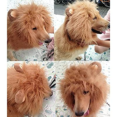 Pet Costume Lion Mane Wig Hair Clothes Festival Fancy Dress up with Ears