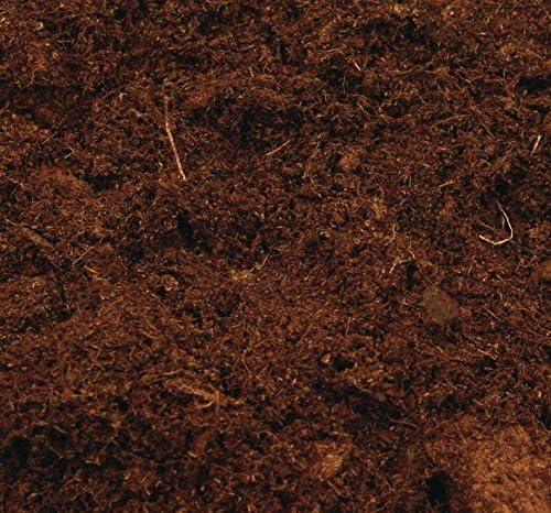Canna Terra Professional - Bolsa de mezcla de tierra, 50L: Amazon ...