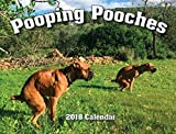 img - for 2018 Pooping Pooches White Elephant Gag Gift Calendar book / textbook / text book