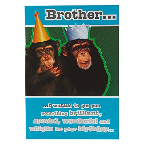 Hallmark Birthday Card For Brother Funny Monkey
