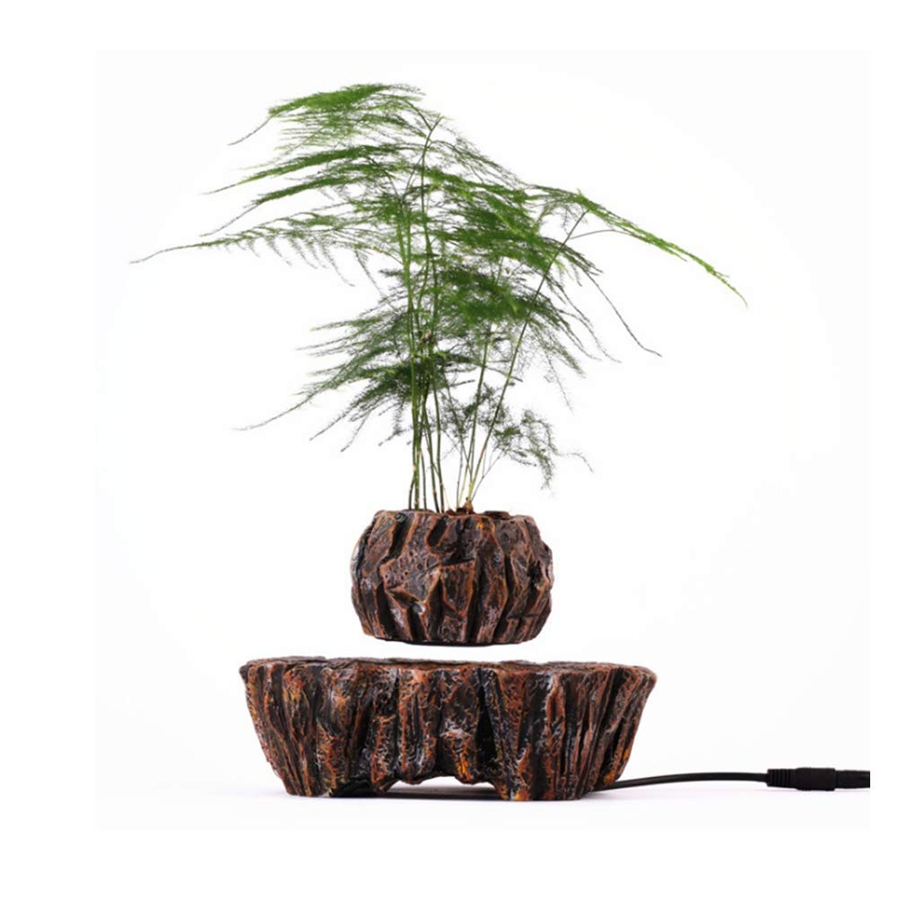 ZQYR GAME# Levitating Air Bonsai Pot Creative Design Magnetic Suspension Floating Suspended Potted Plant Flower Pot, Imitation Mountain Lake Resin Base Potted, Model M005B-PW by ZQYR GAME#