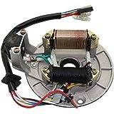 CNCMOTOK 2 Coil Ignition Magneto Stator Plate for 50cc 70cc 90cc 110cc 125cc Taotao Kazuma SSR Baja ATV Quad Dirt Kick…
