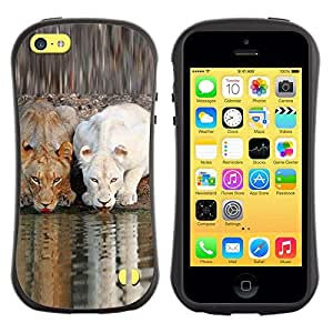 "Pulsar iFace Series Tpu silicona Carcasa Funda Case para Apple iPhone 5C , León lindo Naturaleza africana río Savannah"""