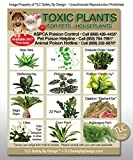 TOXIC HOUSE PLANTS Poison for Pets Dogs Cats Emergency ICE Home Alone Refrigerator Magnet (Qty. 1)