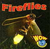 Fireflies, Heather C. Hudak, 1590368681