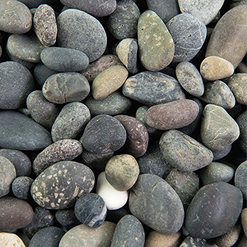 Southwest Boulder & Stone Landscape Rock and Pebble   20 Pounds   Natural, Decorative Stones and Gravel for Landscaping, Gardening, Potted Plants, and More (Mixed Mexican Beach Pebble, 3/8 Inch)