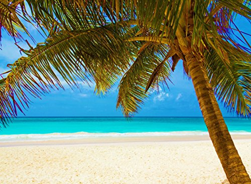 (Adult Jigsaw Puzzle Relaxing Beach Ocean Coconut Palm Tree Scene)