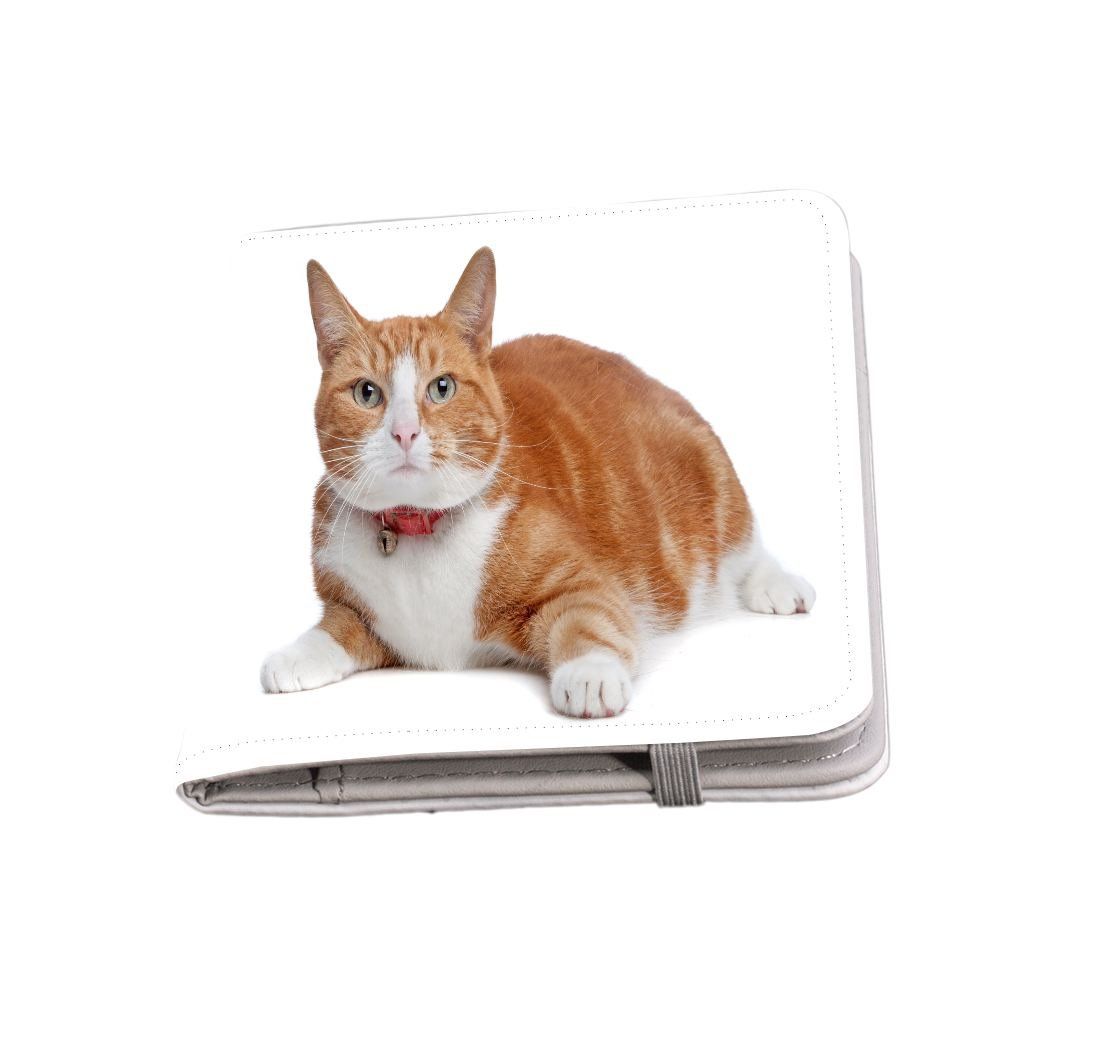 Rikki Knight European Short Haired Ginger And White Cat Passport Holder with slots for Travel documents