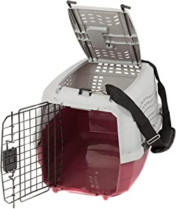 Favorite Portable Pet Carrier