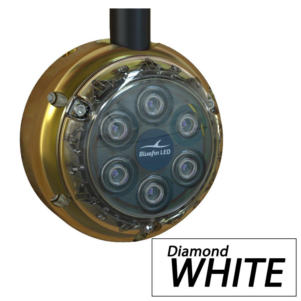 Bluefin LED Bluefin LED dl6ホワイトDockライト2500ルーメン12 VDC B00MNQSID0