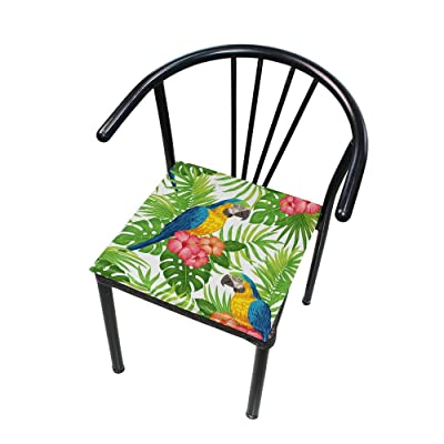 """HNTGHX Outdoor/Indoor Chair Cushion Tropical Leaf Parrot Square Memory Foam Seat Pads Cushion for Patio Dining, 16"""" x 16"""": Home & Kitchen"""