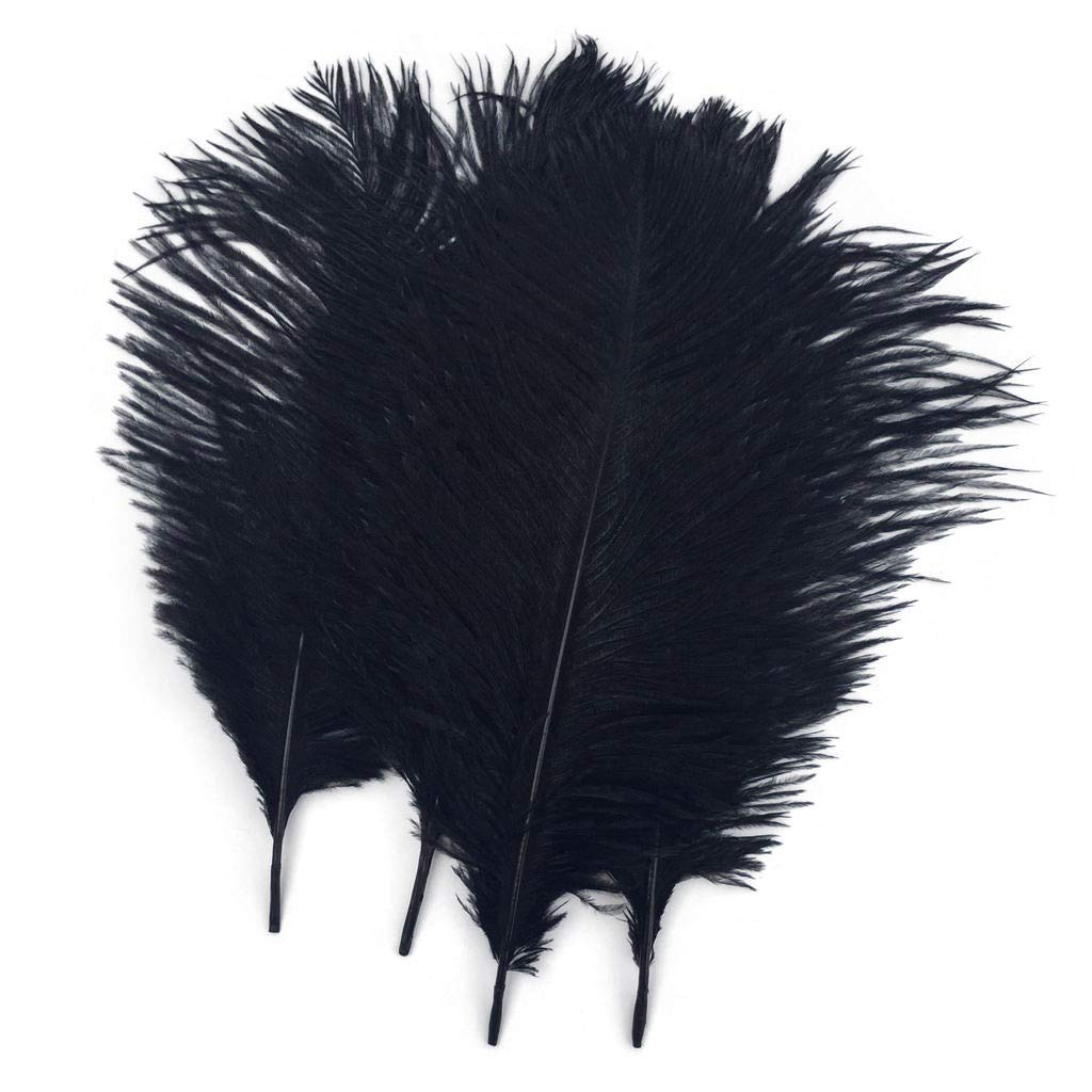 Shekyeon 10-12inch 25-30cm Ostrich Feather Home Decoration DIY Craft Pack of 10 Champagne