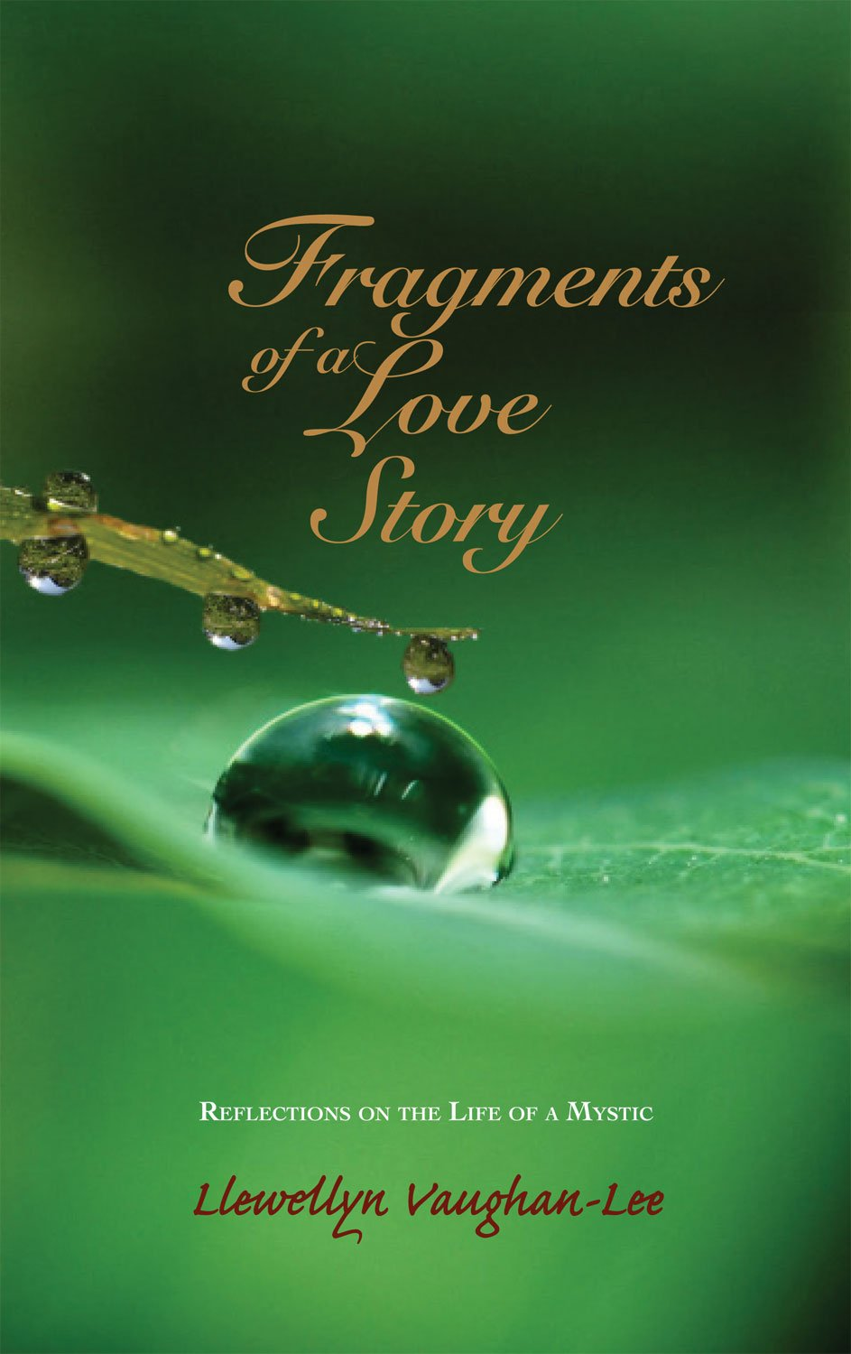 Read Online Fragments of a Love Story: Reflections on the Life of a Mystic pdf