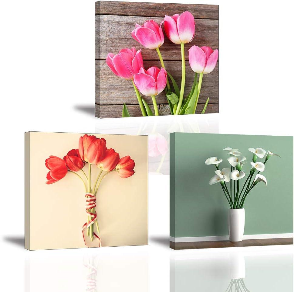 Piy Painting Cuadro sobre Lienzo Imagen Elegante Flor de Tulipán Impresión Blanco Flor de Lirio de Cala Pinturas Murales Decor Dibujo con Marco para Sala 3X 30x30cm