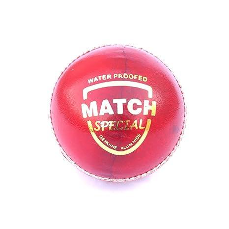 Ikshvaku Solutions Diseño de Pelota de críquet | Piel | Rojo ...