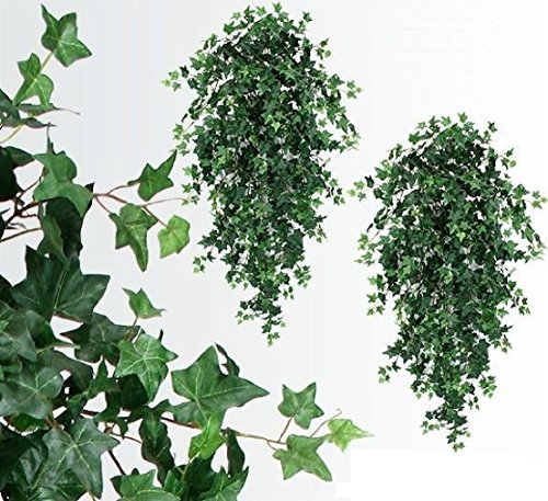 TWO 51'' Ivy Hanging Bush x18 Silk Plants Wedding Decor by Black Decor Home (Image #1)