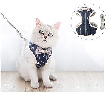 Amazon.com: Ifanr Arnés para gato con correa, a prueba de ...