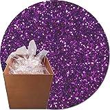 Glitter My World! Craft Glitter: 25lb Box: Princess Purple