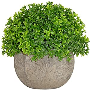 Kumii Artificial Plastic Potted Plant Small Topiary Plants in Pot, Desk Office Living Room Decoration 40