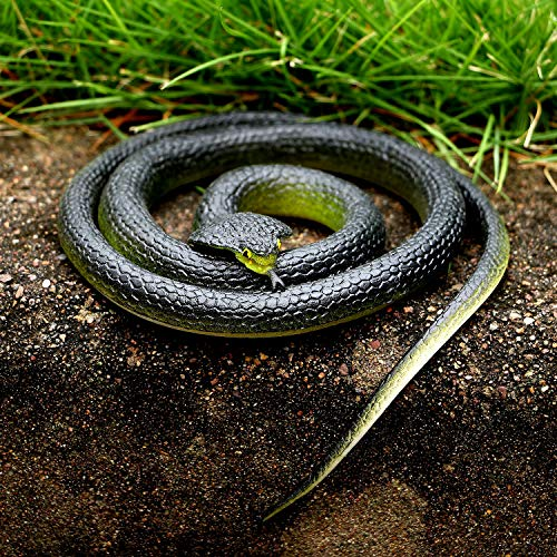 VAMEI 3 Piezas de Serpiente de Goma elástica Serpiente ...