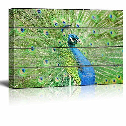 Canvas Wall Art - Peacock Spreading Its Tail on Vintage Wood Textured Background - Rustic Country Style Modern Giclee Print Gallery Wrap Home Decor- 12