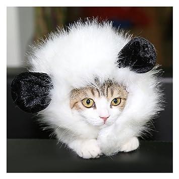 DELIFUR Peluca de traje de peluca de gato Peluca de gato de peluca de le¨