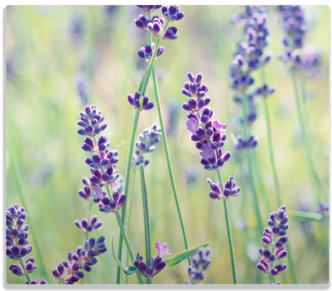 Wallario Herdabdeckplatte/Spitzschutz aus Glas, 1-teilig, 60x52cm, für Ceran- und Induktionsherde, Lila Blumenfreude - Violette Pflanzen auf der Wiese posterdepot