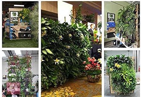 9 Bolsillos Bolsa Vertical Colgante Decoración Jardín de Hierbas Planta Pared Interior / Exterior Verde: Amazon.es: Jardín